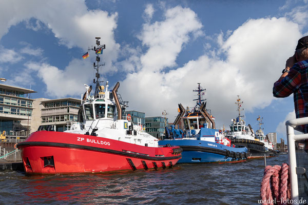 Schlepperflotte vor Anker
