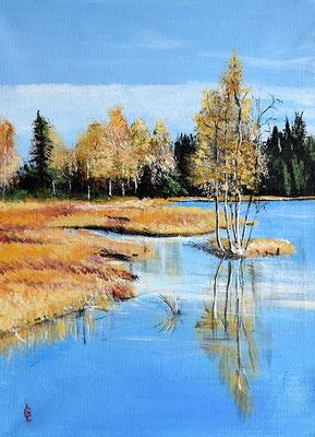 Bild-Nr. 7905 Titel: Seenlandschaft