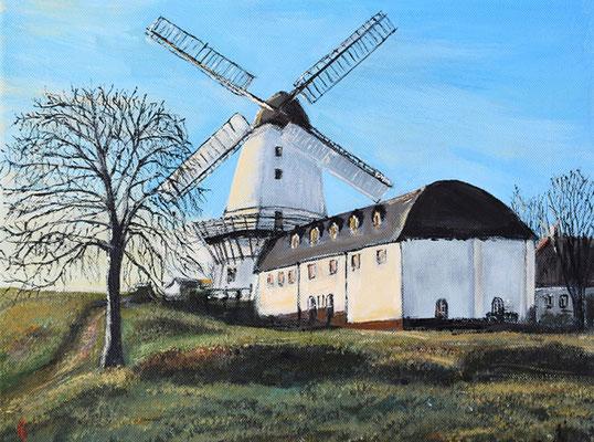 Bild-Nr. 7745 Titel: Dänisches Landleben