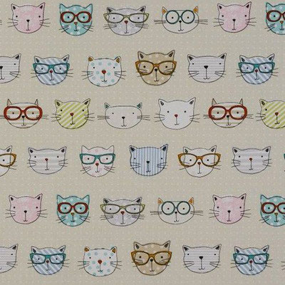 Katzen mit Brille