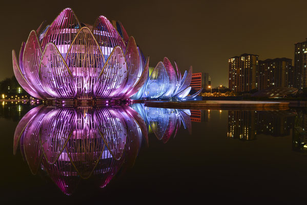 The Lotus Building Changzhou