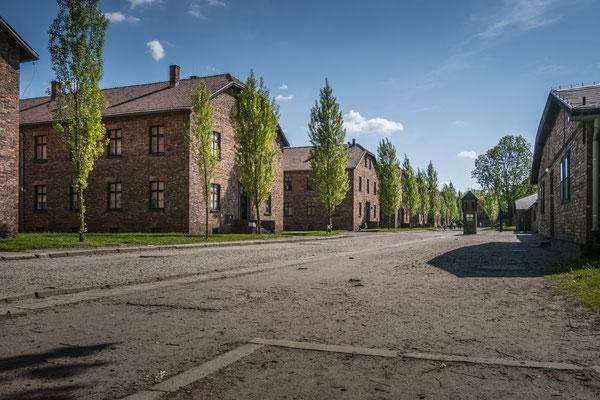 """Die Gebäude stammen aus einer Zeit vor dem Konzentrationslager. Es war eine Kaserne der polnischen Armee. Teils waren die Gebäude einstöckig und wurden im laufe des Lagerausbaus erweitert. In jedem Gebäude """"lebten"""" mehrere hunderte Häftlinge."""