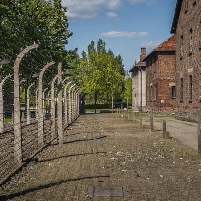 Zumal wurde das gesamte Gelände durch Starkstromführende Zäune umschlossen.