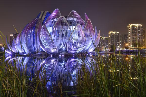 The Lotus Building Changzhou