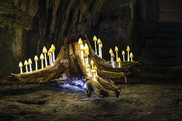 Kronach Leuchtet 2018 - Fotograf Heiko Probst