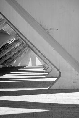 Ciutat de les Arts i les Ciències Architecture Calatrava Candela Probst Heiko Photography Valencia