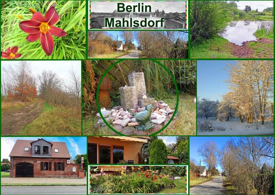 Berlin-Mahlsdorf im Grünen
