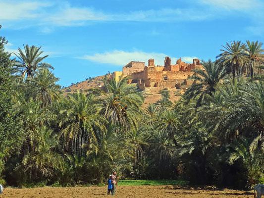 Marokko, Oase Tiout