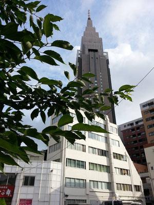 東京の昨年の梅雨明けは7月6日頃でつたが、今年はいつ頃でつかねぇ。7月21日予想! 【2014年6月27日】