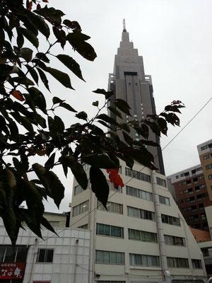 朝から大久保駅の人身事故で電車が止まるわ、新宿駅構内でおっさんに絡まれるわで、イヤな一日のスタートになりますた。じっとしてよ。  【2014年11月12日】