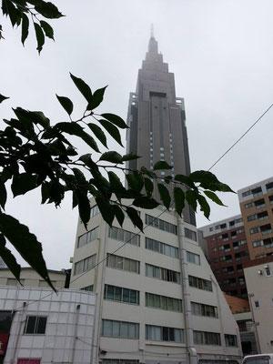 金土日と、ずっと雨だぉ。梅雨でんなぁ~。 【2014年7月4日】