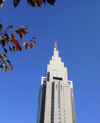 東京は晴れでつよぉ~! 天高くドコモ聳える秋…だなぁ〜! 【2011年11月17日】