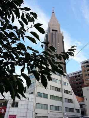 今朝、東京は今季一番の寒さだったらすいが、おでは依然とすてノーヒートテックでつよ。 【2014年10月30日】