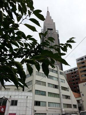 明日から台風18号の影響で大荒れでつよ! 【2014年10月4日】