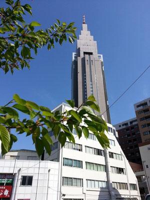 今日は、よよこ~の入学式でつ。そすて来週は、志摩賢島本校でペンギンと一緒の入学式でつ。 【2014年4月12日】