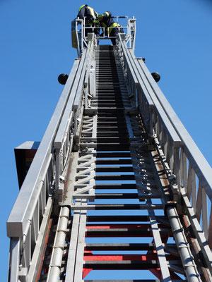 Leiterlänge bis zu 30m.