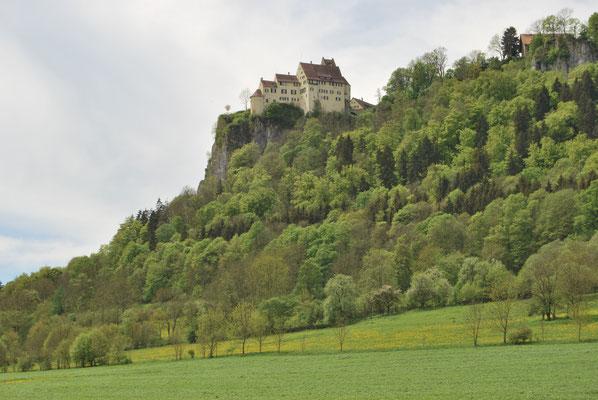 Burg Werenwag