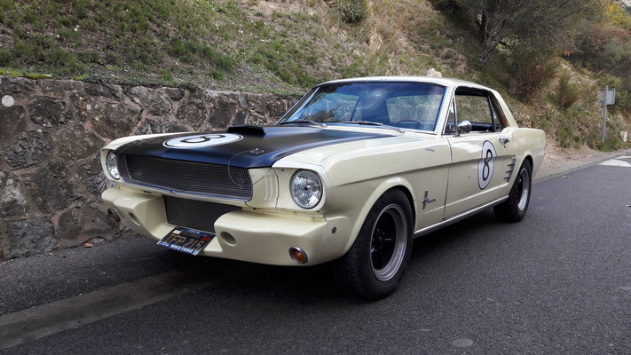 Ford Mustang 1966 (Mr Jean-Marc G. 13)