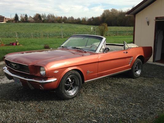 Ford Mustang 1966 V8 5 l (Mr Franck D. 72)