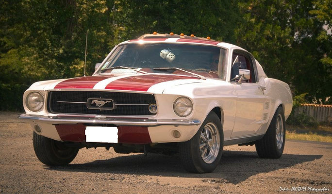 Ford Mustang (Mr Pascal D. 13)