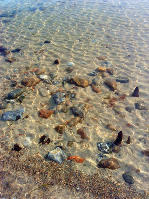 Strandsteine im Flachwasser