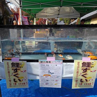 横に目をやると・・・「えっ?鯉すくい300円!?」初めて見ました(笑) 気になります!