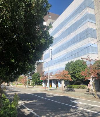 東外側駐車場(住所:大垣市東外側町2-21)に車を停めます