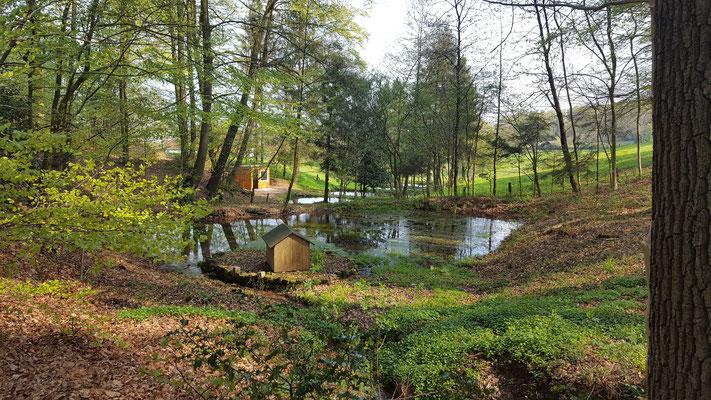 Forellenzucht im Tecklenburger Land