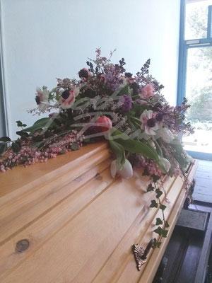 Anemonen Sargauflage Einfach Blume