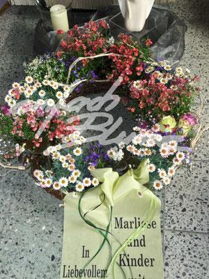 Gepflanzter Trauerkranz Einfach Blume