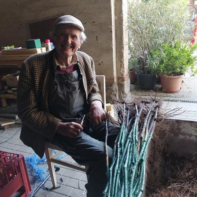 Opa bereitet zuhause die Reben vor