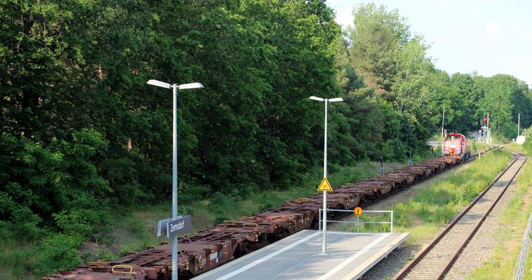 """04.05.2019: Delta-Rail Diesellok """"Gravita"""" mit Containertragwagen"""