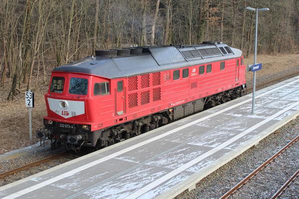 28.02.2018: LEG Lok 232 673 auf Leerfahrt von Kablow nach KW