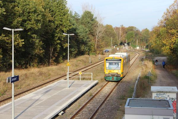 27.10.2014: Einfahrt OEDEG VT 64 auf Gleis 2