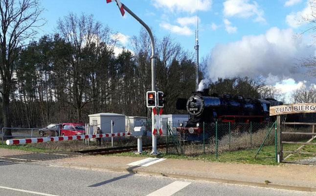 Lok 52  8177 mit Sonderzug am BÜ Friedersdorf Richtung Storkow, 14.03.2020