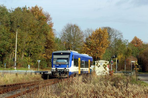 NEB-VT 009 nach KW bei Einfahrt in den Bahnhof Zernsdorf, 12.11.2017