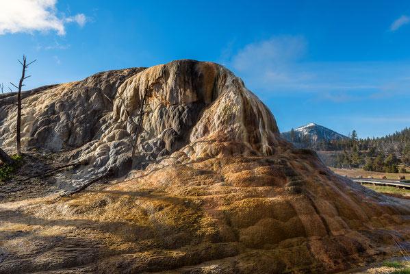 Der Orange Spring Mound in der Nähe der Mammoth Hot Springs - Yellowstone NP, Wyoming