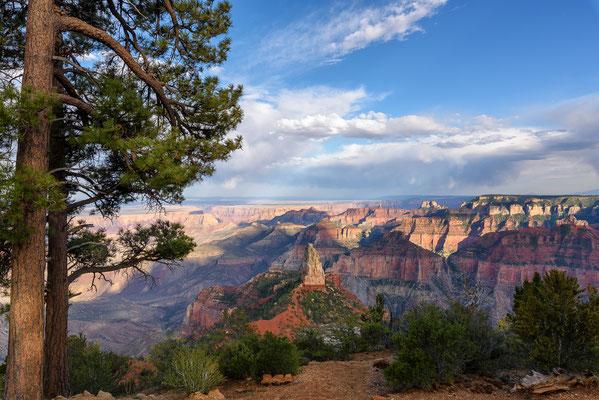 Blick über den Grand Canyon, Arizona