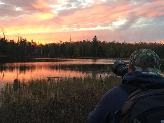 Sonnenuntergang im Baxter State Park, Maine