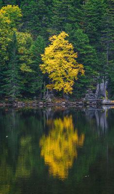 Reflektion, New Hampshire