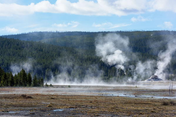 Dampfende Quellen an einem kalten Morgen -  Yellowstone National Park, Wyoming