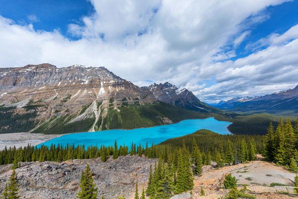 Der wunderschöne Peyto Lake - Banff NP, Kanada