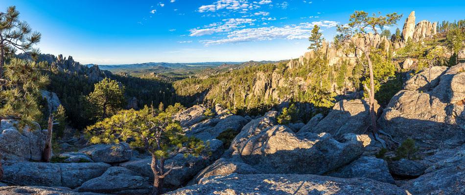 Black Hills Panorama, South Dakota