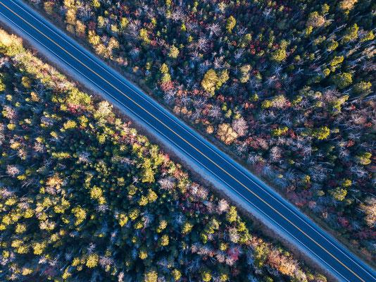 Herbstiliche Straße in Neu England