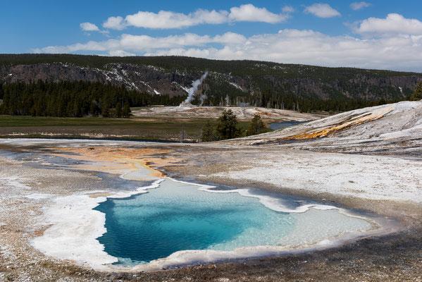 Lower Geyser Basin - Yellowstone NP, Wyoming
