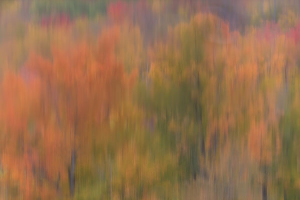 Herbstliche Spiegelung, New Hampshire
