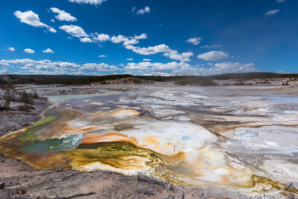 Norris Geyser Basin - Yellowstone NP, Wyoming