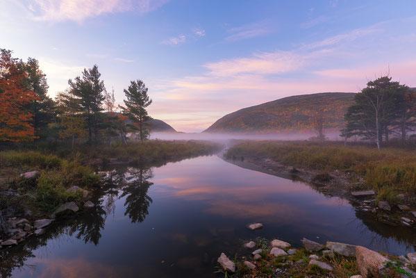 morgendlicher Nebel im Acadia National Park
