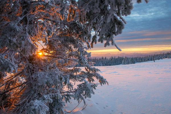 Winterlicher Sonnenuntergang bei Minus 18 Grad - Fischbacher Alpen, Steiermark