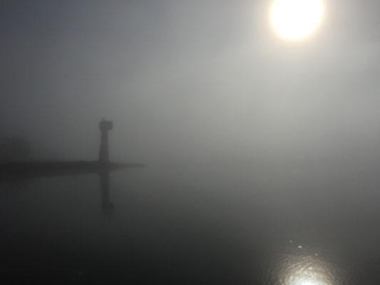 Nebel auf der Elbe bei Boizenburg